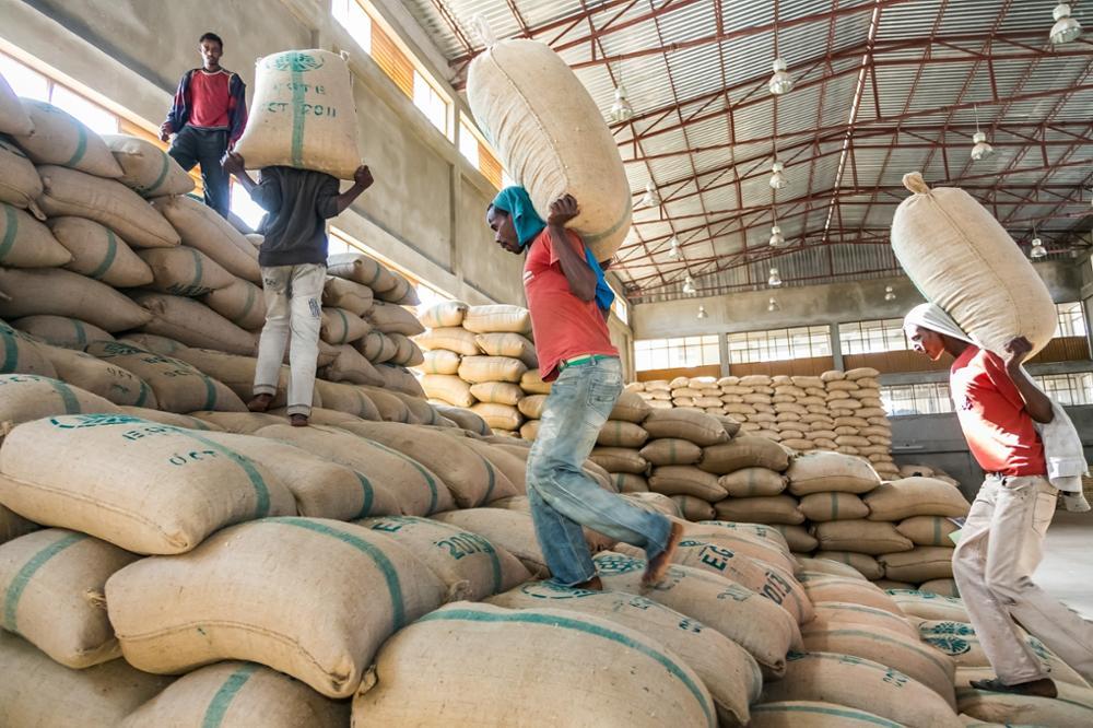Le café en Ethiopie, tout un rituel